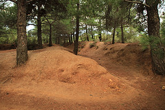 Original trenches - Gallipoli - Small Group, Special Interest