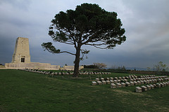 Lone Pine on a cloudy day - Gallipoli - Escorted Tour